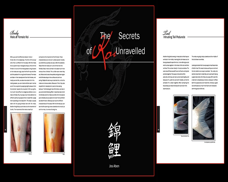 The Secrets of Koi Unravelled Book by Jos Aben